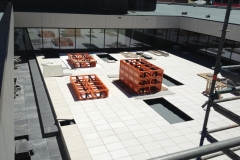 wide-shot-national-library-roof